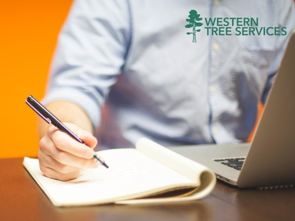 Western Tree Services Corp | Contact Us